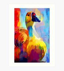 Duck 3 Art Print