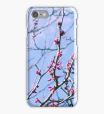 Spring Buds iPhone Case/Skin