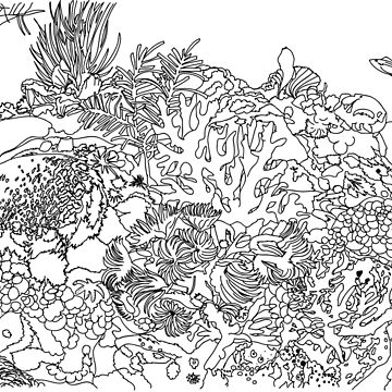 Coloring Book of Ocean Coral Reef by TinaGraphics