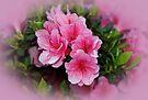 Azaleas in Pink by Sandy Keeton