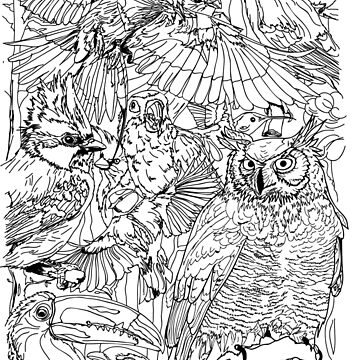 Coloring Book of Birds by TinaGraphics