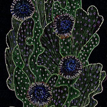 Blooming Cactus, Black & Neon by clipsocallipso