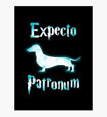 Expecto patronum dog. Photographic Print