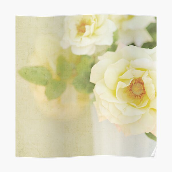 Amber Roses II Poster