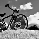 Infrared Bike by Jen Waltmon