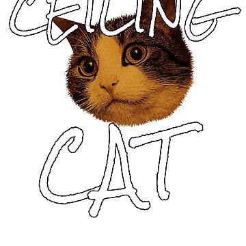 Ceiling Cat  by MMadson