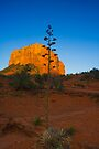 Sedona Sunset Court House Rock by photosbyflood
