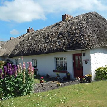Thatched Cottages by stuartk