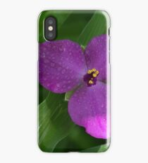 Garden Flowers With Water Drops Close Up View. iPhone Case