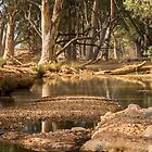 Natural Spring by Stephen Ruane