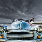 Enjoying the Ride by Heidi Stewart