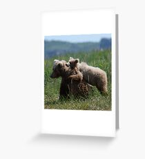 Alaska Grizzly Mother And A Cub In Katmai National Park #RedBubble  Greeting Card