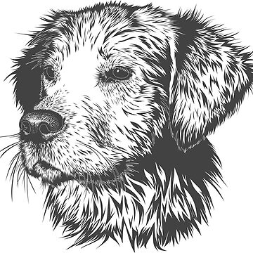 Dog head drawing by Ines50