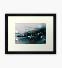 A Touch Of Teal Framed Print