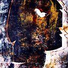 Visage by Wayne Gerard Trotman