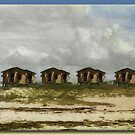 Beach Houses by Richard  Gerhard