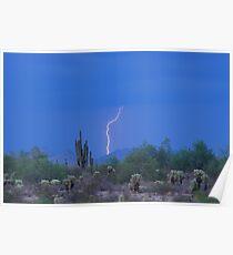 Lightning Strike in the high desert Poster