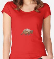 Marching Baby Tortoise Cartoon Vector Isolated Women's Fitted Scoop T-Shirt