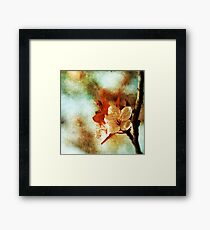 Not So Perfect. Framed Print