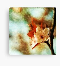 Not So Perfect. Canvas Print