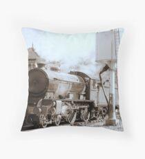 """Morayshire"" at Bolton Abbey Throw Pillow"