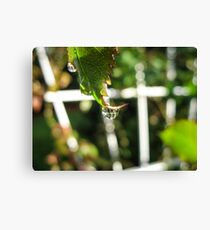 Fairy Garden Canvas Print