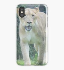 lioness on the hunt iPhone Case