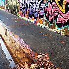Fitzroy graffiti in Autumn by Roz McQuillan