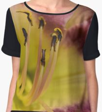 Lily of Virginia Chiffon Top