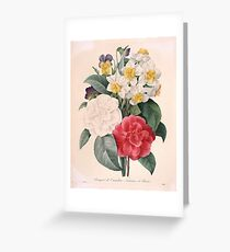 Camellias, Pansies, and Narcissus Greeting Card