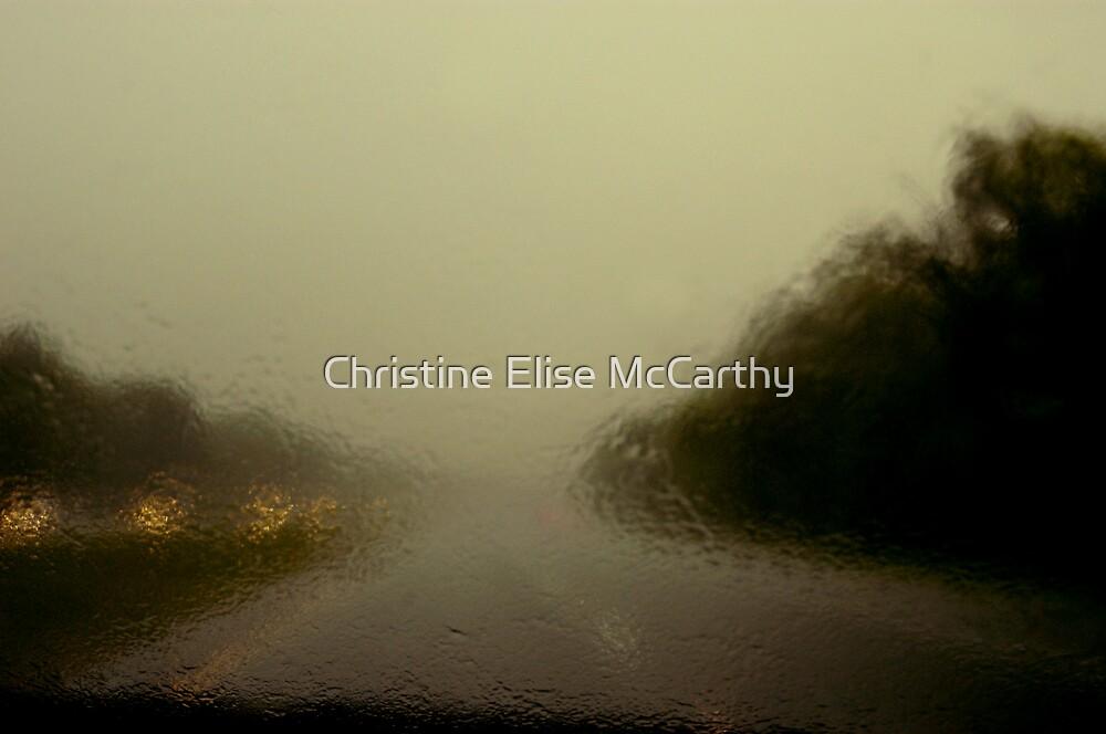 Louisiana Rain by Christine Elise McCarthy