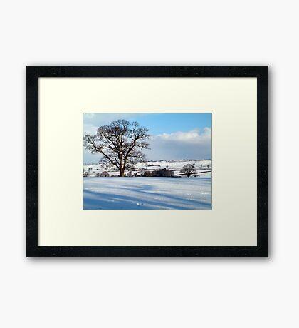 Winter Days Framed Print