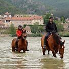 Danube River, Spitz by styles