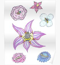 Flowers and Insects  Poster