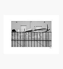 P51 Photographic Print