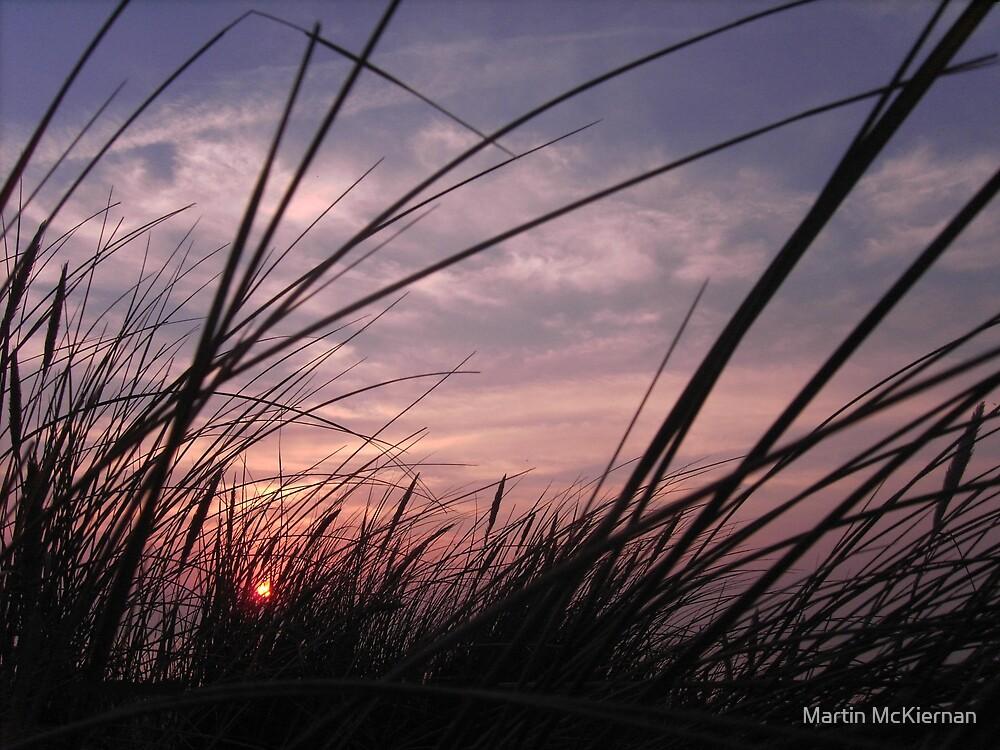 Dune Grass by Martin McKiernan