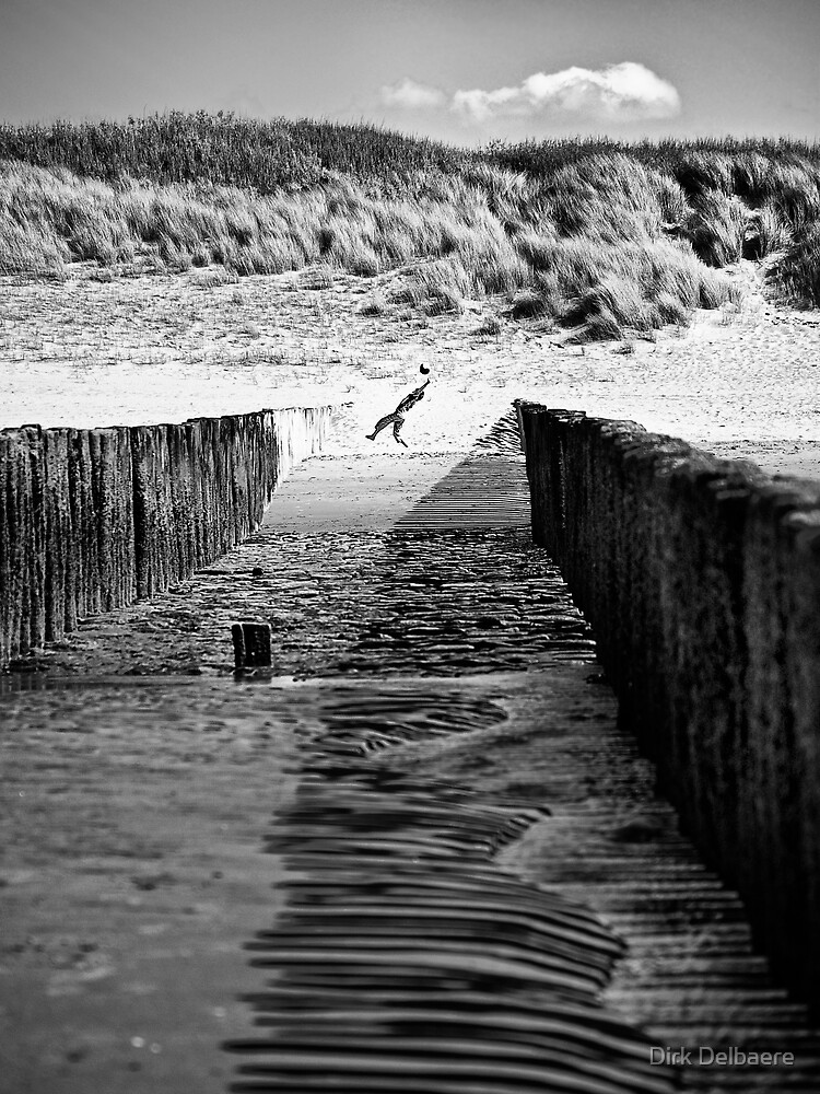 Catch by Delbaere