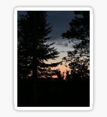 Red White and Blue Sunset Through Trees Sticker