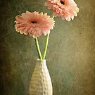 Simplicity by Barb Leopold