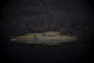 Violette Insel (Fjorde) von josemanuelerre
