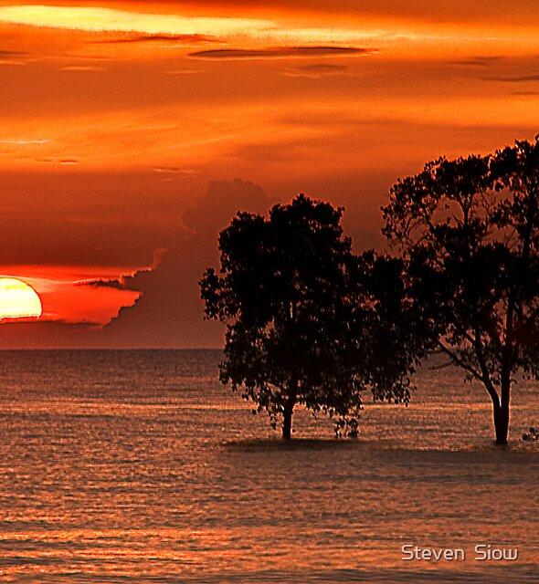 Sensational Sunset by Steven  Siow