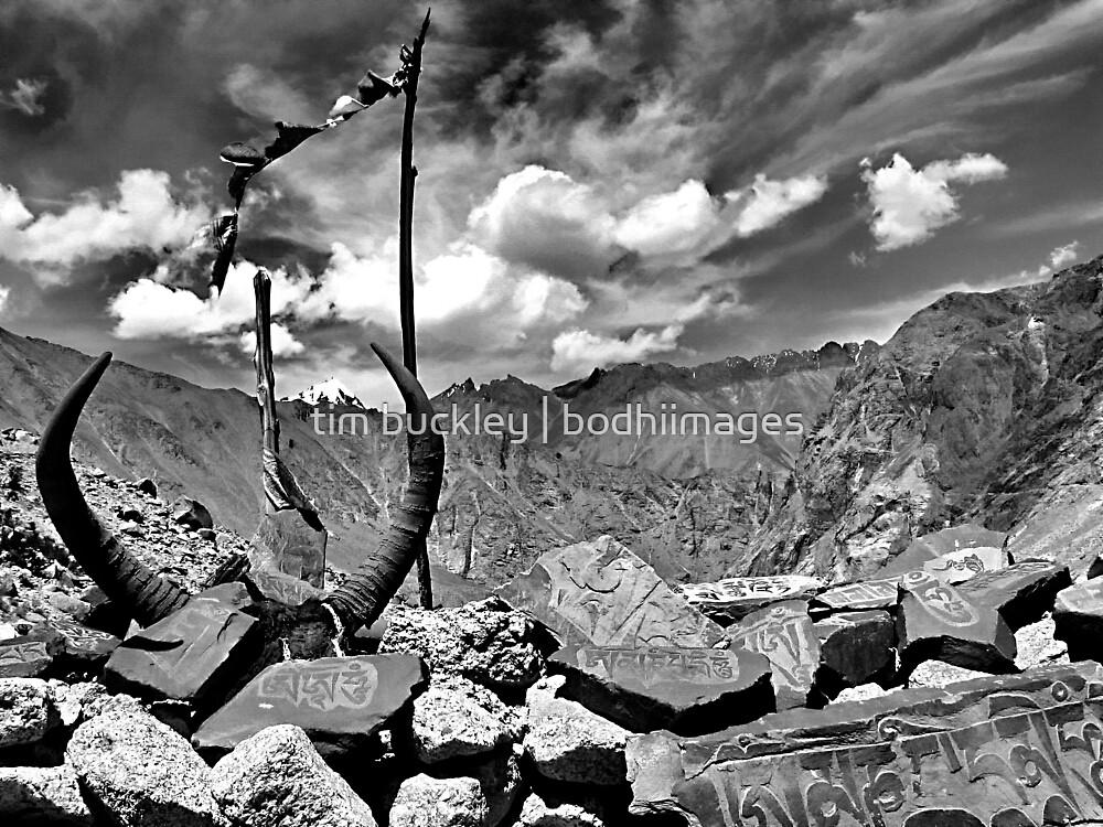 high pass. ladakh, jammu kashmir, india by tim buckley   bodhiimages