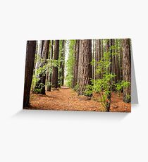 Allow Nature's Peace to Flow into You Greeting Card