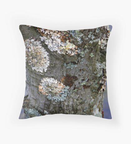 Rainbow Lichen Throw Pillow
