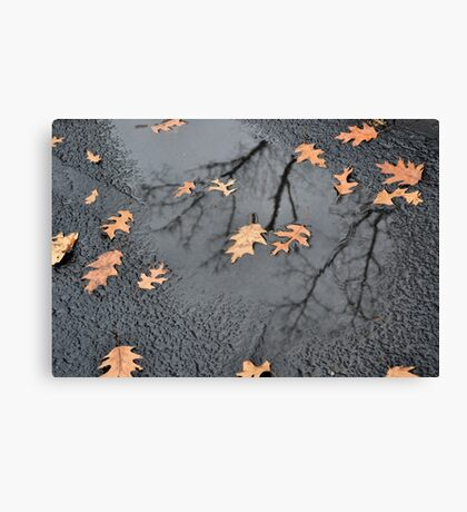 Not Ready to Leave Canvas Print