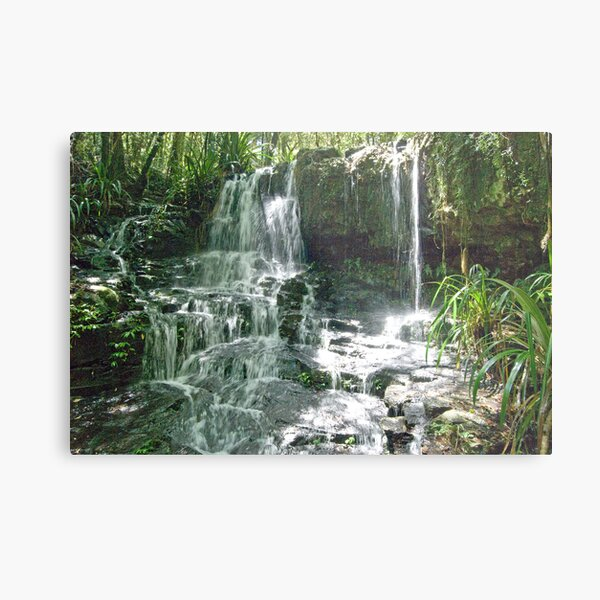 Waterfall, Lamington National Park, Queensland, Australia Metal Print