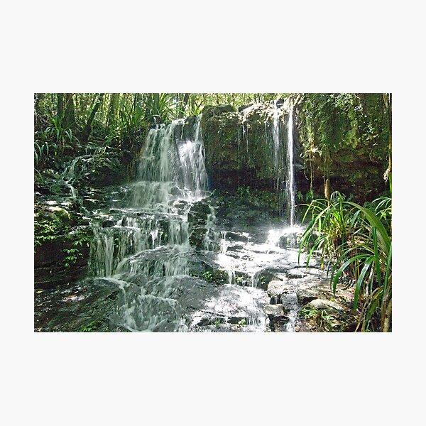 Waterfall, Lamington National Park, Queensland, Australia Photographic Print