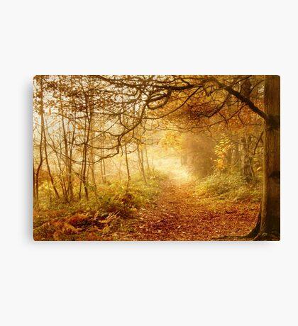 Autumn Woodland Canvas Print
