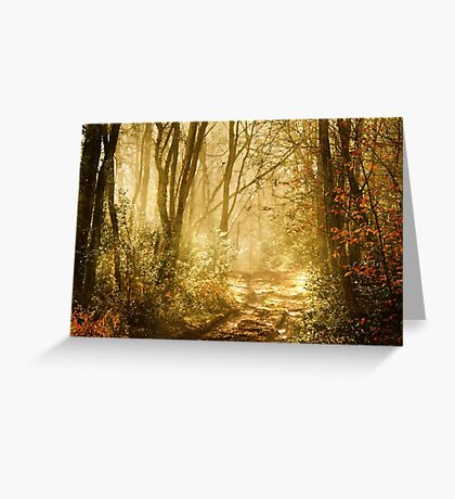 Light To My Path Greeting Card