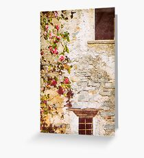 Camelia flowers and decayed house Greeting Card